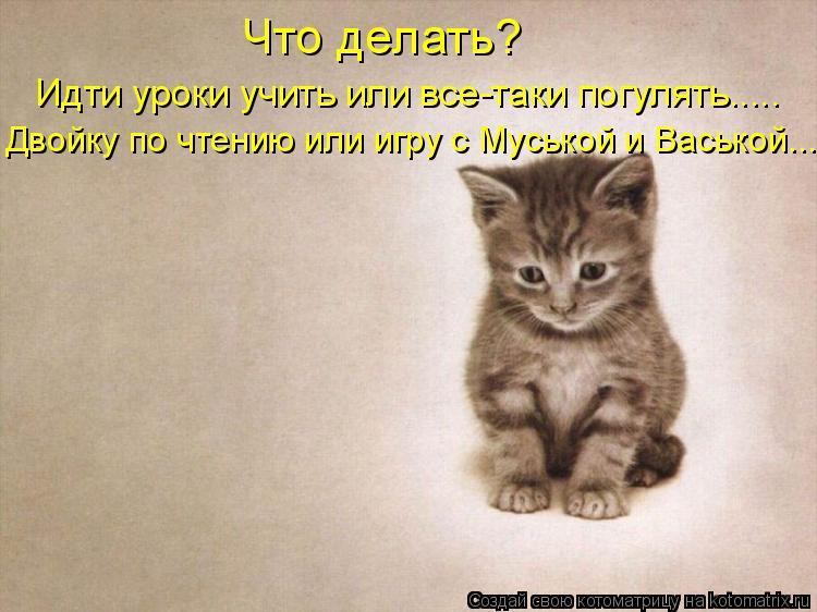 Котоматрица: Что делать?  Идти уроки учить или все-таки погулять..... Двойку по чтению или игру с Муськой и Васькой....