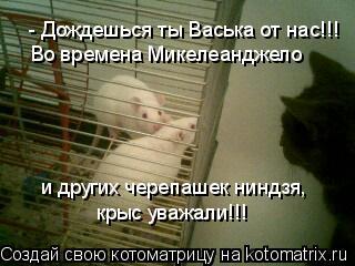 Котоматрица: - Дождешься ты Васька от нас!!! Во времена Микелеанджело и других черепашек ниндзя, крыс уважали!!!
