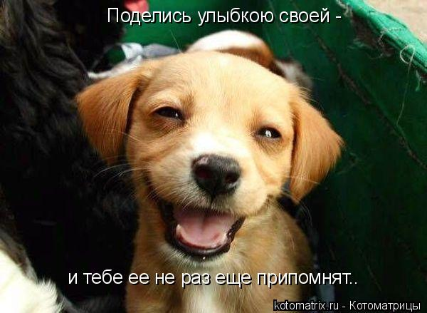 Котоматрица: Поделись улыбкою своей -  Поделись улыбкою своей -  и тебе ее не раз еще припомнят.. и тебе ее не раз еще припомнят..