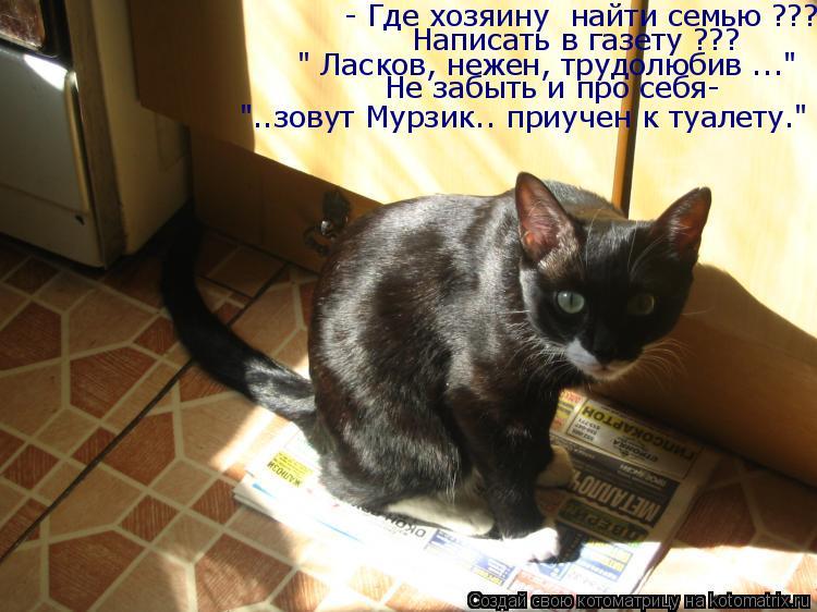 """Котоматрица: - Где хозяину  найти семью ??? Написать в газету ??? """" Ласков, нежен, трудолюбив ..."""" Не забыть и про себя- """"..зовут Мурзик.. приучен к туалету."""""""