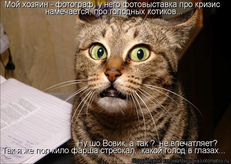 Котоматрица: Ну шо Вовик, а так ?..не впечатляет? Так я же пол кило фарша стрескал...какой голод в глазах... Мой хозяин - фотограф, у него фотовыставка про кри