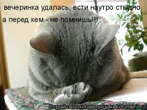 Котоматрица: вечеринка удалась, ести наутро стыдно, а перед кем - не помнишь!!!