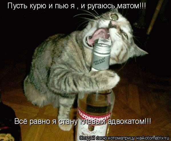 Котоматрица: Пусть курю и пью я , и ругаюсь матом!!! Всё равно я стану клёвый адвокатом!!!