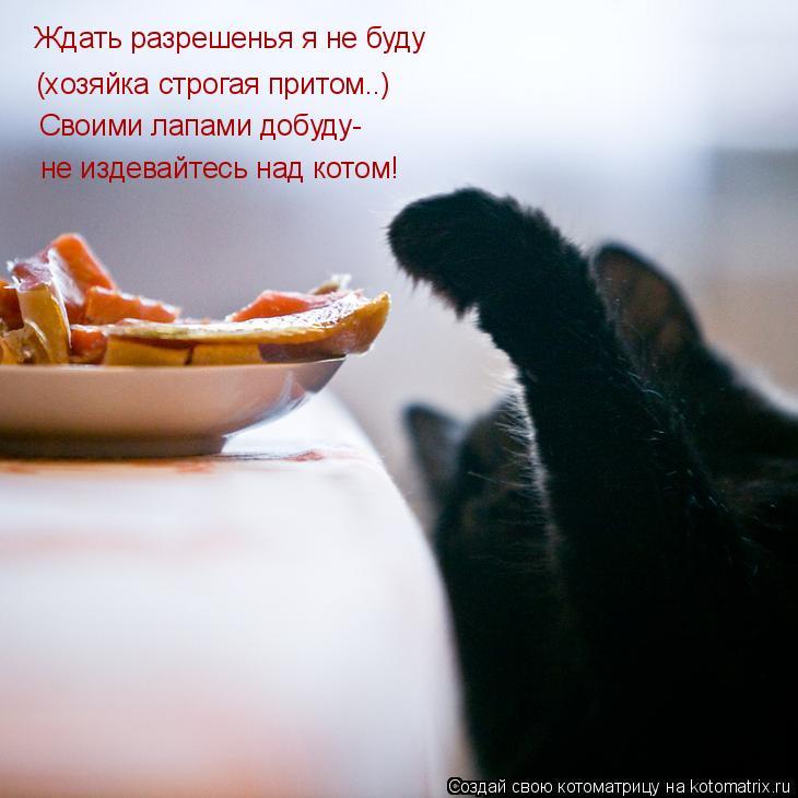 Котоматрица: Ждать разрешенья я не буду (хозяйка строгая притом..) Своими лапами добуду- не издевайтесь над котом!