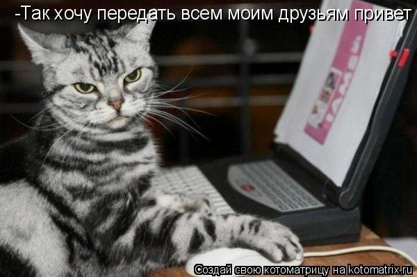 Котоматрица: -Так хочу передать всем моим друзьям по почте  -Так хочу передать всем моим друзьям привет