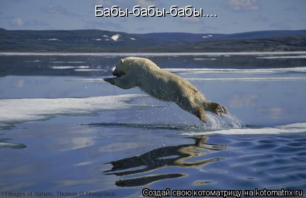 Шёл, спотыкаясь, Белый медведь Белой пустыней, по белой зиме, Солнца не...