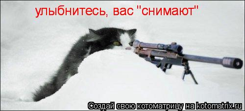 "Котоматрица: улыбнитесь, вас ""снимают"" улыбнитесь, вас ""снимают"""