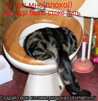 Котоматрица: -а как мне плохо!! -не надо было стоко пить