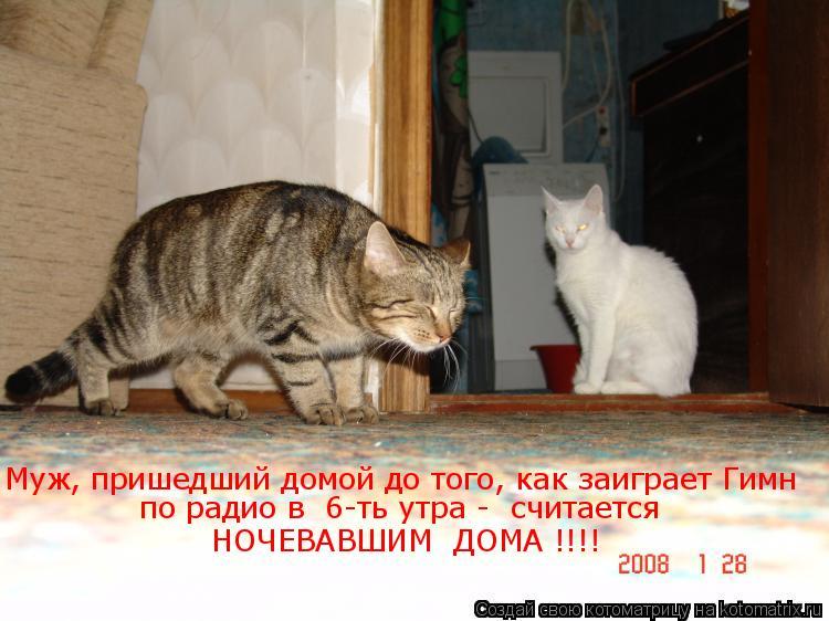 Котоматрица: Муж, пришедший домой до того, как заиграет Гимн  по радио в  6-ть утра -  считается     НОЧЕВАВШИМ  ДОМА !!!!