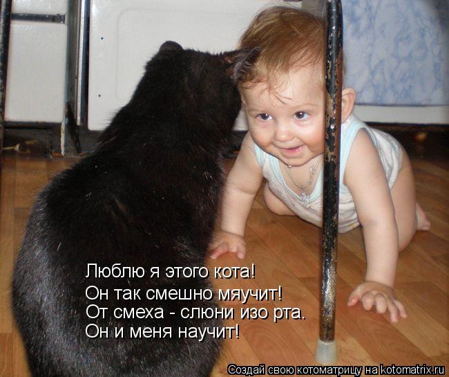 Котоматрица: Люблю я этого кота! Он так смешно мяучит! От смеха - слюни изо рта. Он и меня научит!