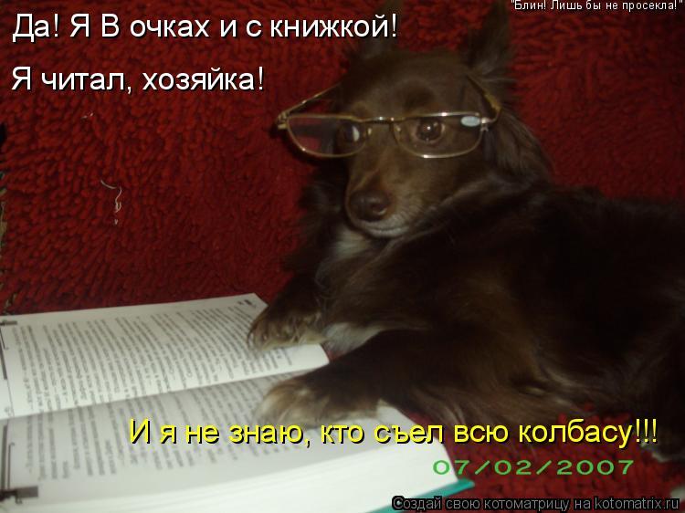 """Котоматрица: Да! Я В очках и с книжкой! Я читал, хозяйка! И я не знаю, кто съел всю колбасу!!! """"Блин! Лишь бы не просекла!"""""""