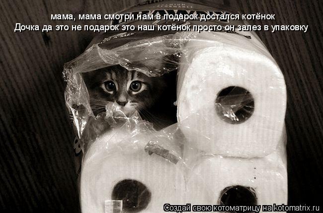 Котоматрица: мама, мама смотри нам в подарок достался котёнок Дочка да это не подарок это наш котёнок просто он залез в упаковку
