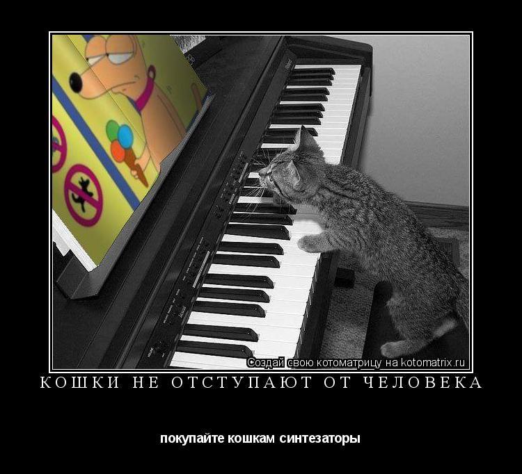 Котоматрица: Кошки не отступают от человека покупайте кошкам синтезаторы