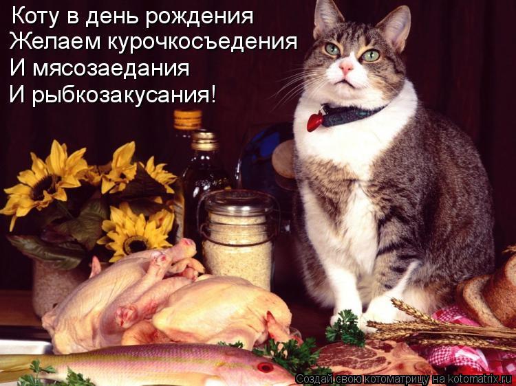 Котоматрица: Коту в день рождения Желаем курочкосъедения И мясозаедания И рыбкозакусания!