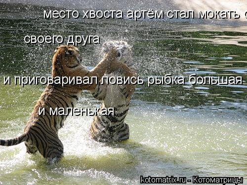 Котоматрица: место хвоста артём стал мокать своего друга  своего друга и приговаривал ловись рыбка большая и маленькая  и маленькая