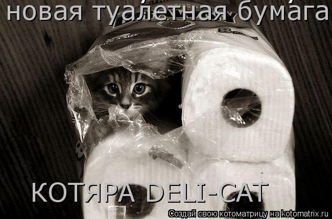 """Котоматрица: новая туалетная бумага """"КОТЯРА DELUXE"""" новая туалетная бумага  КОТЯРА DELI-CAT"""