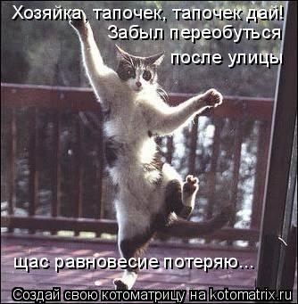 Котоматрица: Хозяйка, тапочек, тапочек дай! Забыл переобуться  после улицы щас равновесие потеряю...