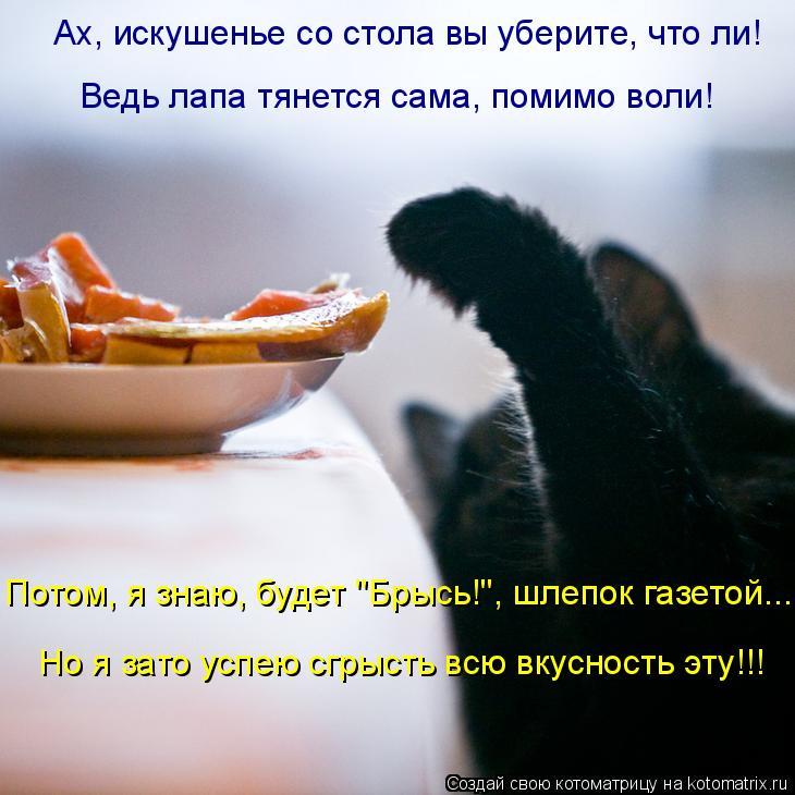 Котоматрица: Ах, искушенье со стола вы уберите, что ли! Ведь лапа тянется сама, помимо воли!  Но я зато успею сгрысть всю вкусность эту!!! Потом, я знаю, буде
