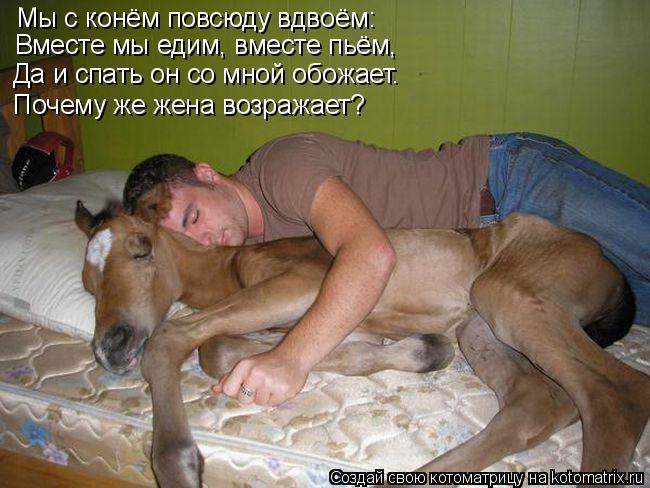 Котоматрица: Мы с конём повсюду вдвоём: Вместе мы едим, вместе пьём, Да и спать он со мной обожает. Почему же жена возражает?