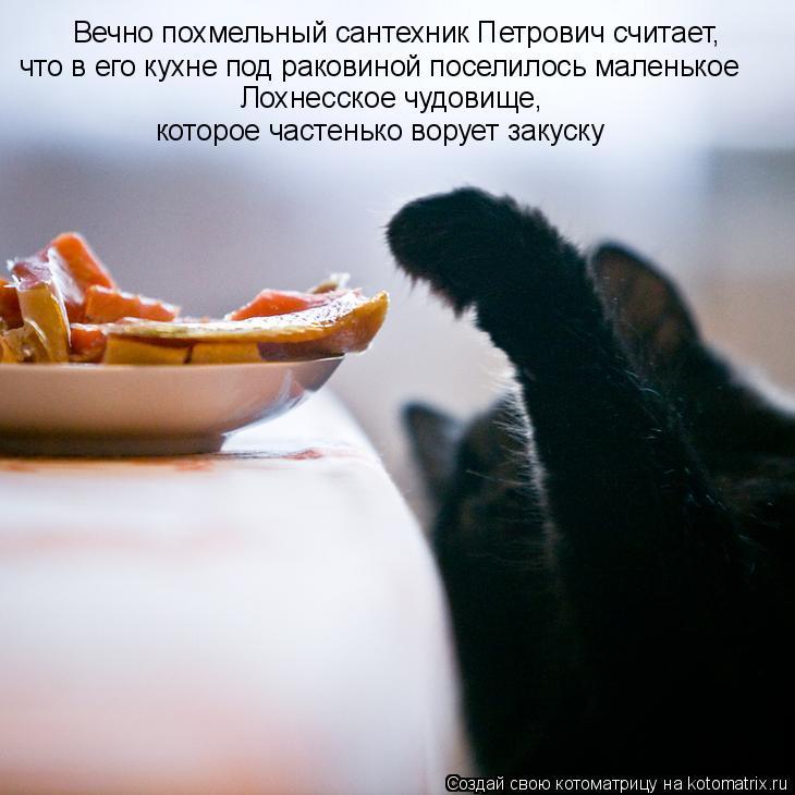 Котоматрица - Вечно похмельный сантехник Петрович считает, что в его кухне под раков