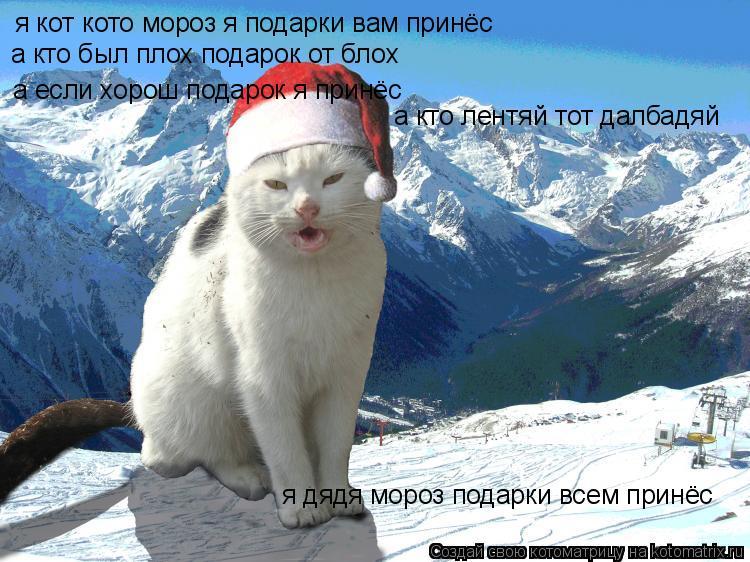Котоматрица: я кот кото мороз я подарки вам принёс а кто был плох подарок от блох а если хорош подарок я принёс  а кто лентяй тот далбадяй я дядя мороз под