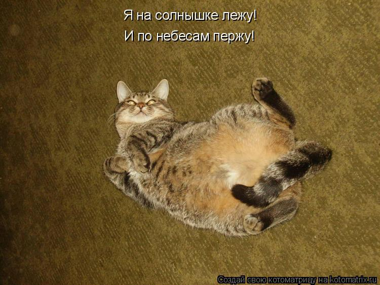 Котоматрица: Я на солнышке лежу! И по небесам пержу!