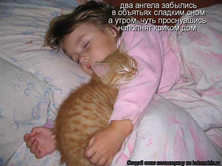 Котоматрица: два ангела забылись в объятьях сладким сном а утром, чуть проснувшись наполнят криком дом