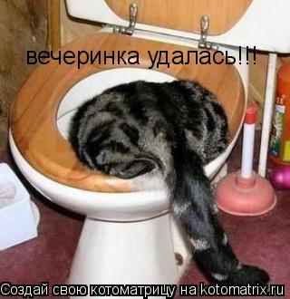 Котоматрица: вечеринка удалась!!!