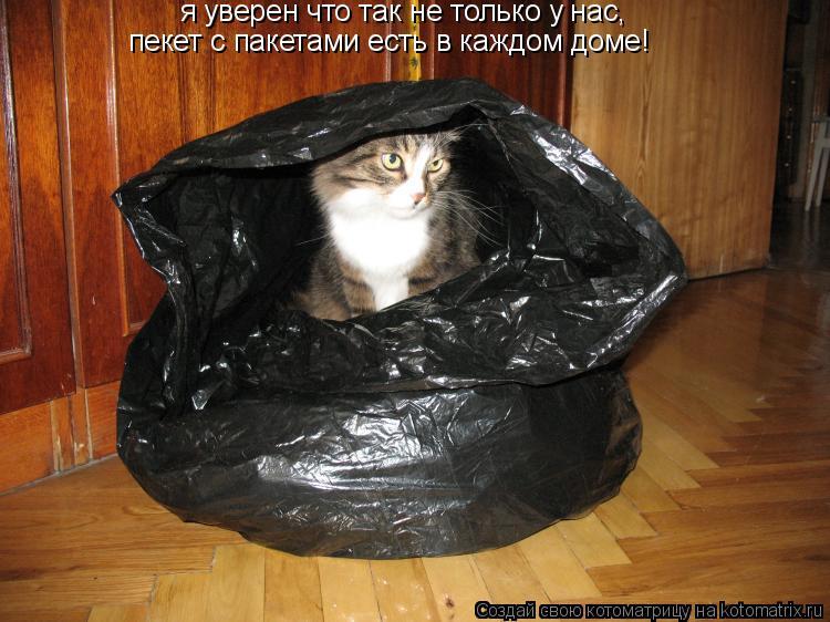 Котоматрица: я уверен что так не только у нас, пекет с пакетами есть в каждом доме!