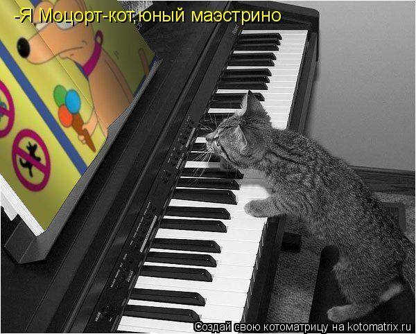 Котоматрица: -Я Моцорт-кот,юный маэстрино