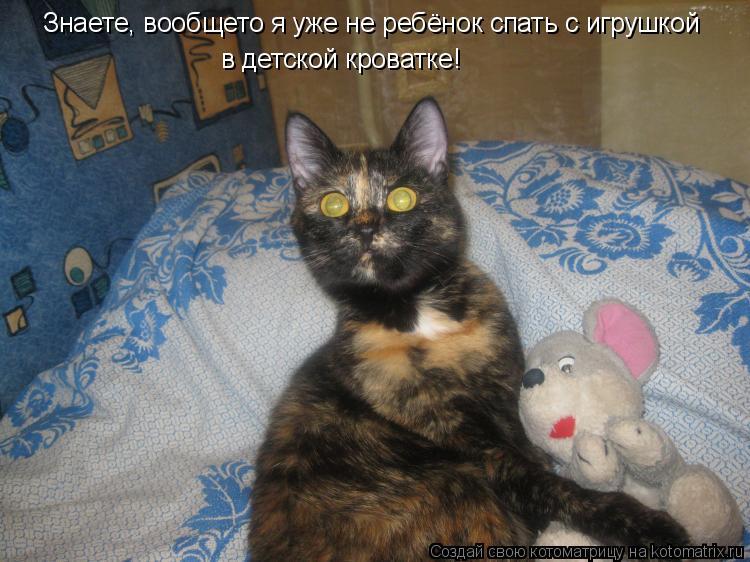 Котоматрица: Знаете, вообщето я уже не ребёнок спать с игрушкой в детской кроватке!