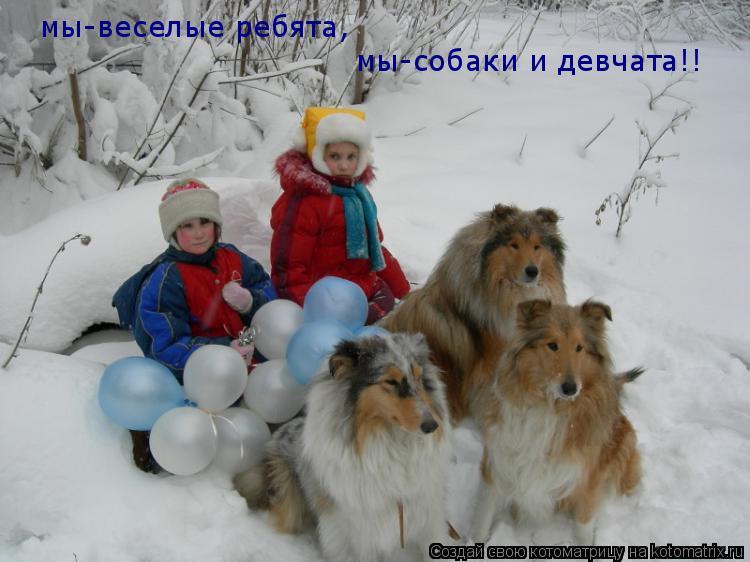 Котоматрица: мы-веселые ребята, мы-собаки и девчата!!