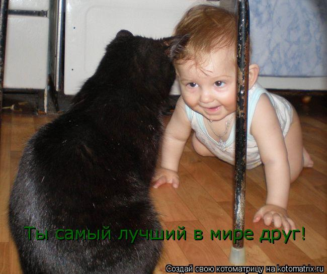 Котоматрица: Ты самый лучший в мире друг!