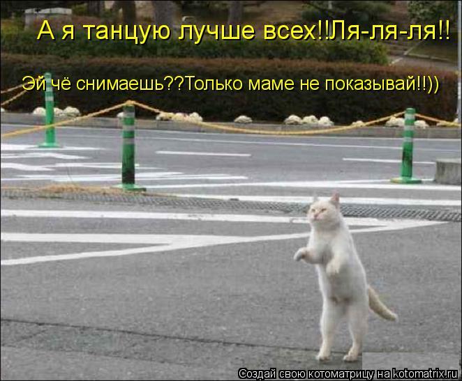 Котоматрица: А я танцую лучше всех!!Ля-ля-ля!! Эй чё снимаешь??Только маме не показывай!!))