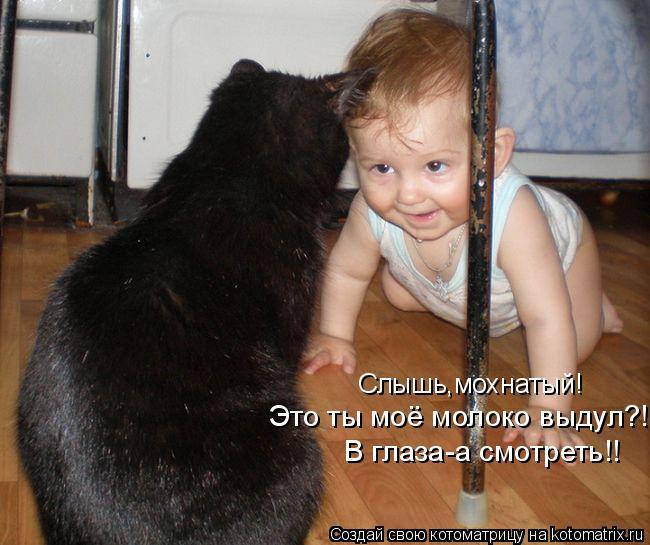 Котоматрица: Слышь,мохнатый!  Это ты моё молоко выдул?! В глаза-а смотреть!!