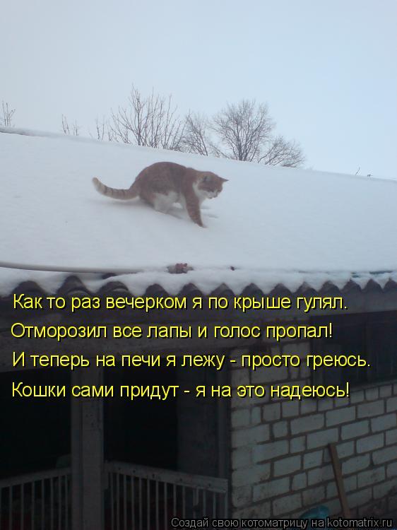 Котоматрица: Как то раз вечерком я по крыше гулял. Отморозил все лапы и голос пропал! И теперь на печи я лежу - просто греюсь. Кошки сами придут - я на это на
