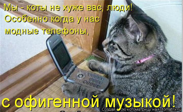 Котоматрица: Мы - коты не хуже вас, люди! Особенно когда у нас  модные телефоны, с офигенной музыкой!