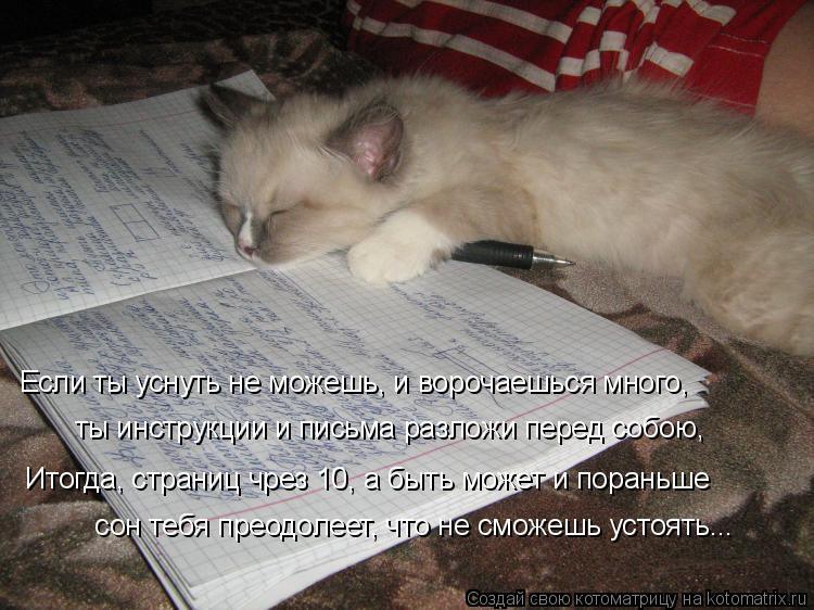Котоматрица: Если ты уснуть не можешь, и ворочаешься много, ты инструкции и письма разложи перед собою, Итогда, страниц чрез 10, а быть может и пораньше  со