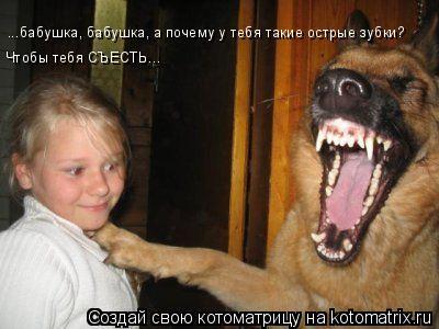 Котоматрица: ...бабушка, бабушка, а почему у тебя такие острые зубки?  Чтобы тебя СЪЕСТЬ...