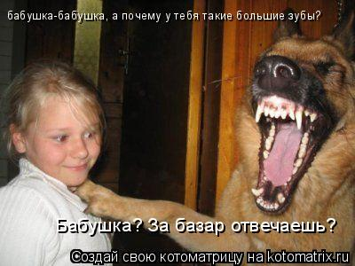 Котоматрица: бабушка-бабушка, а почему у тебя такие большие зубы? Бабушка? За базар отвечаешь?
