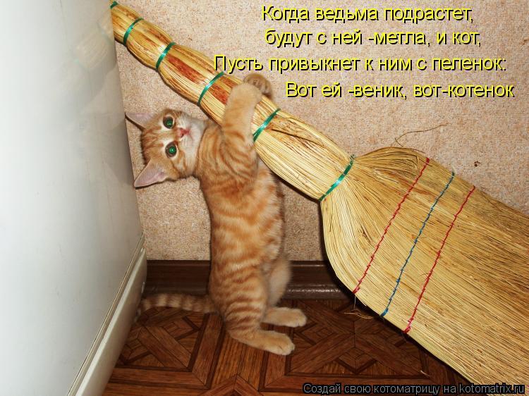 Котоматрица: Когда ведьма подрастет,  будут с ней -метла, и кот, Вот ей -веник, вот-котенок Пусть привыкнет к ним с пеленок: