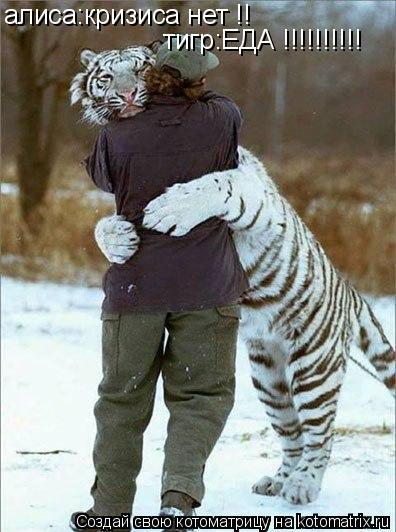Котоматрица: алиса:кризиса нет !! тигр:ЕДА !!!!!!!!!!