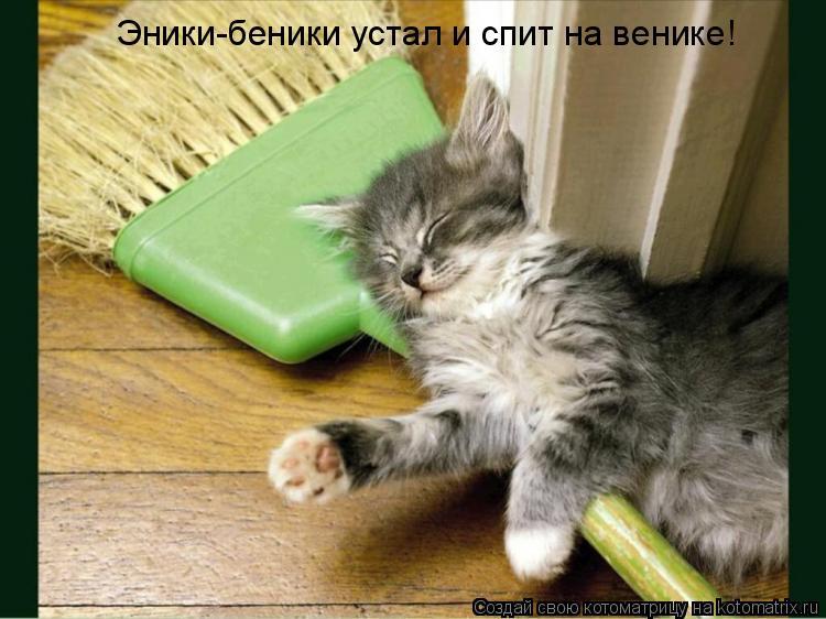 Котоматрица: Эники-беники устал и спит на венике!
