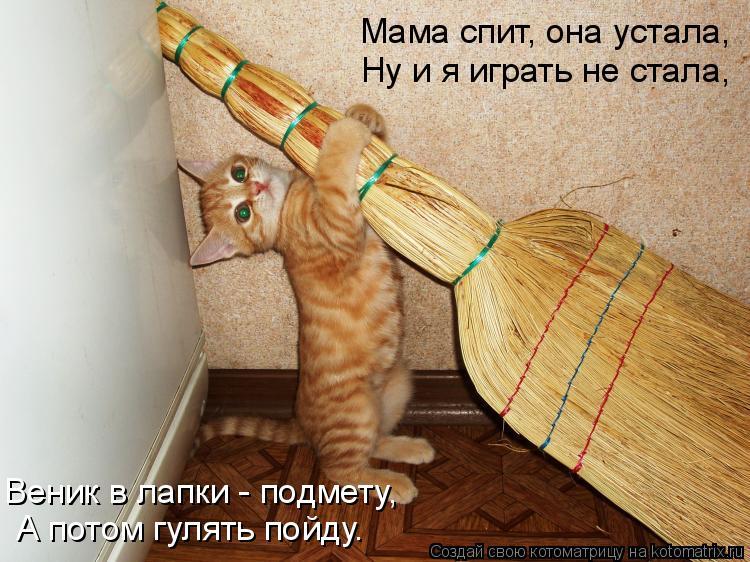 Котоматрица: Мама спит, она устала, Ну и я играть не стала, Веник в лапки - подмету, А потом гулять пойду.