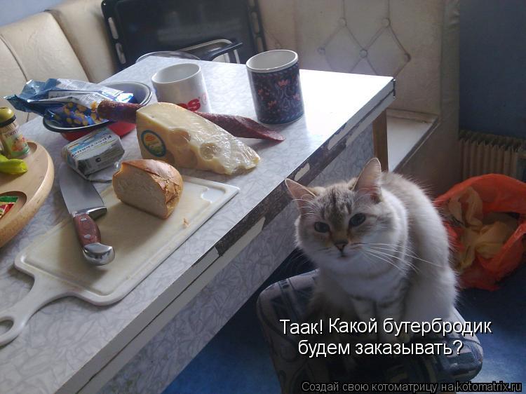 Котоматрица: Таак! Какой бутербродик будем заказывать?