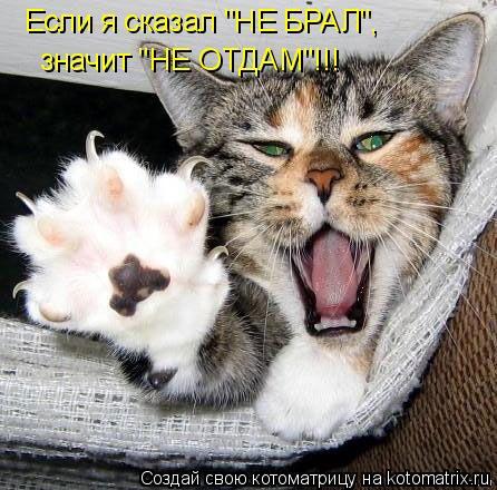 """Котоматрица: Если я сказал """"НЕ БРАЛ"""", значит """"НЕ ОТДАМ""""!!!"""