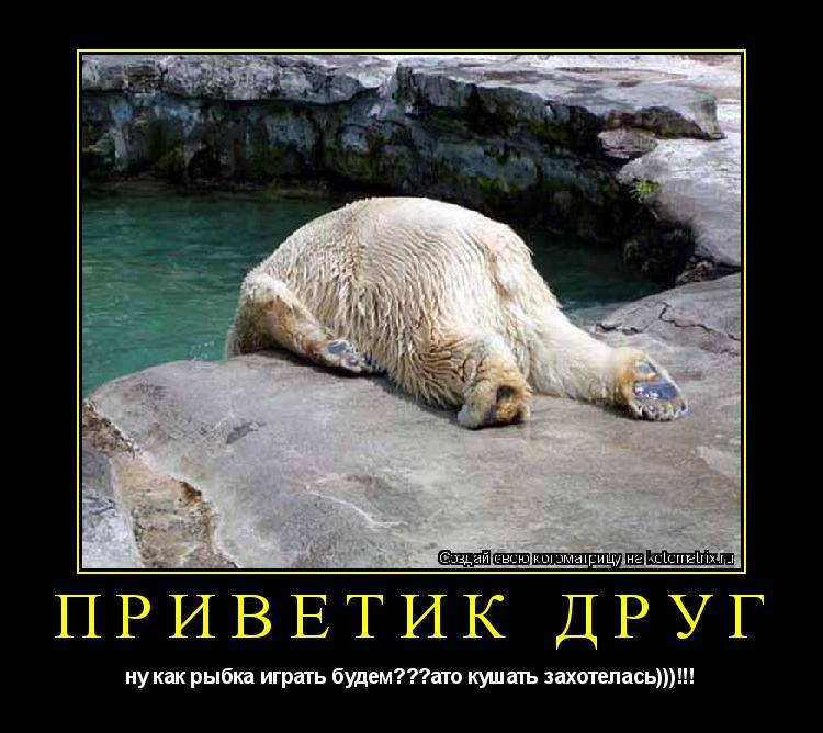 Котоматрица: приветик друг ну как рыбка играть будем???ато кушать захотелась)))!!!