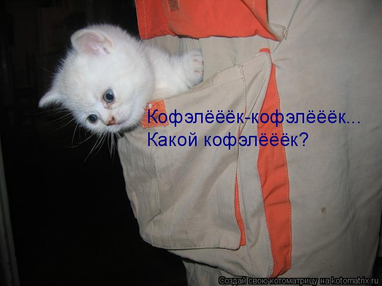 Котоматрица: Кофэлёёёк-кофэлёёёк... Какой кофэлёёёк?