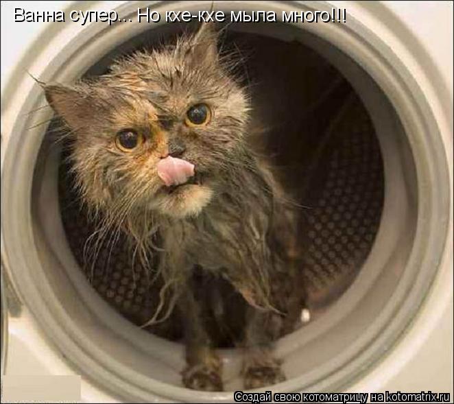 Котоматрица: Ванна супер... Но кхе-кхе мыла много!!!
