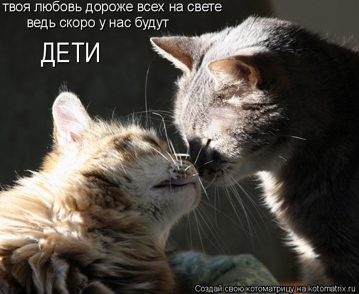 Котоматрица: твоя любовь дороже всех на свете ведь скоро у нас будут ДЕТИ